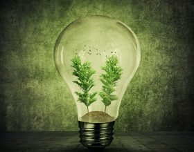 What might the future of energy look like?